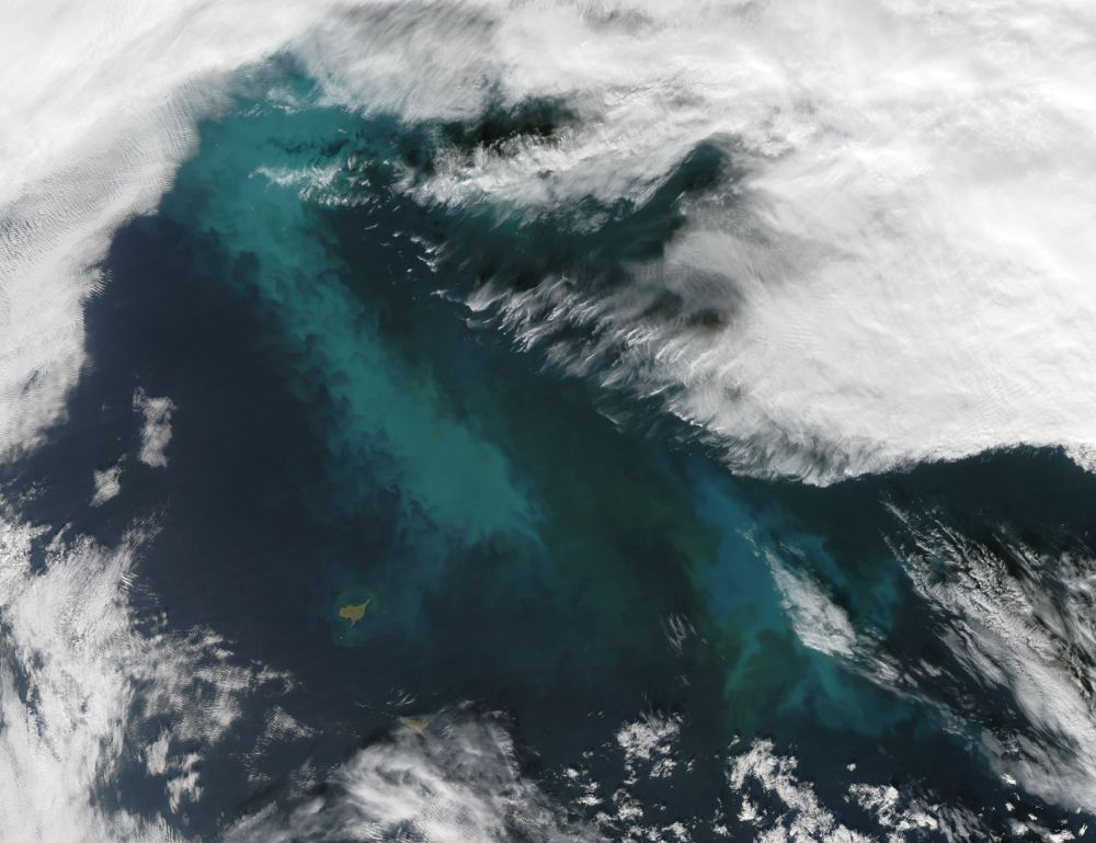 Phytoplankton Bloom in the Bering Sea